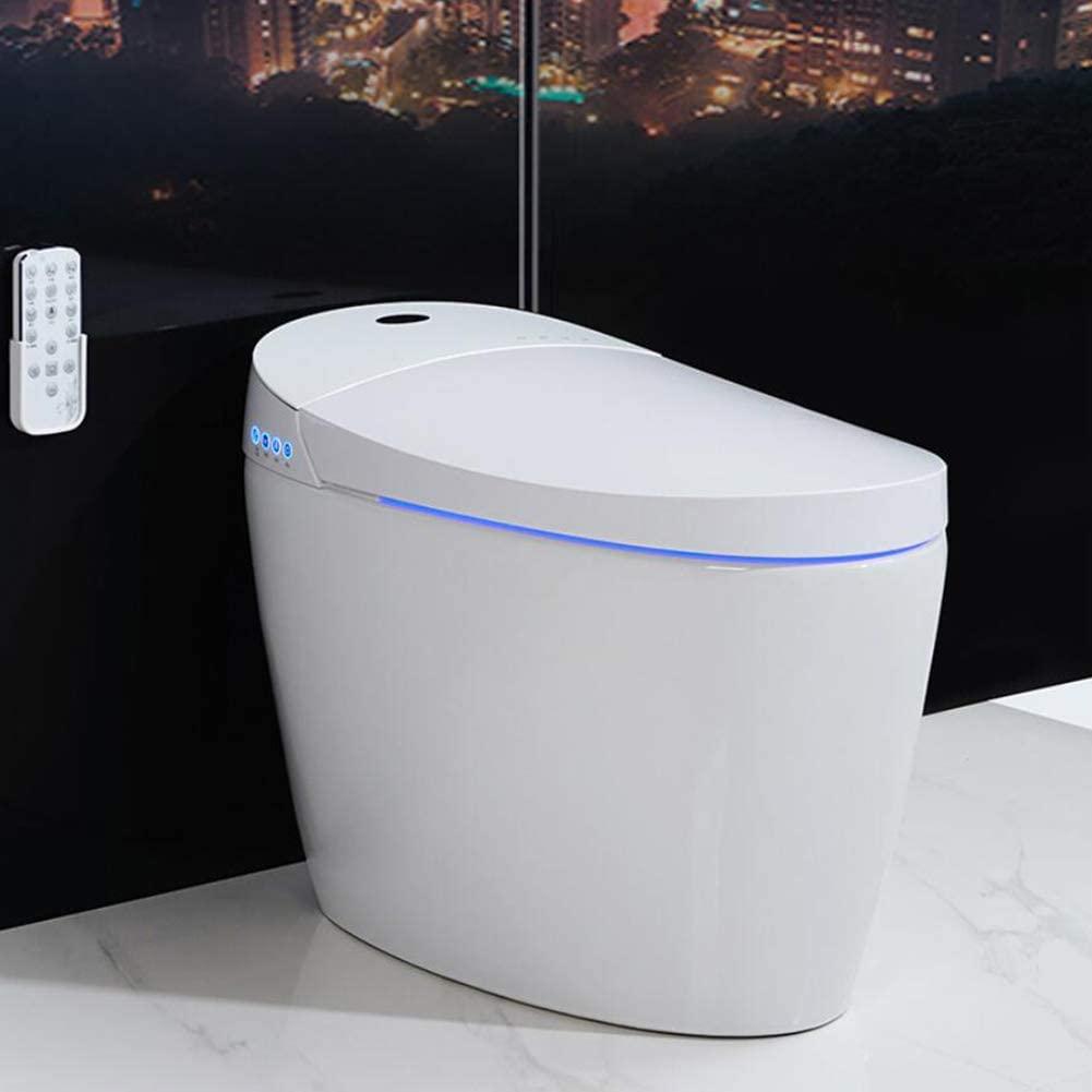 Quelles toilettes japonaises choisir?